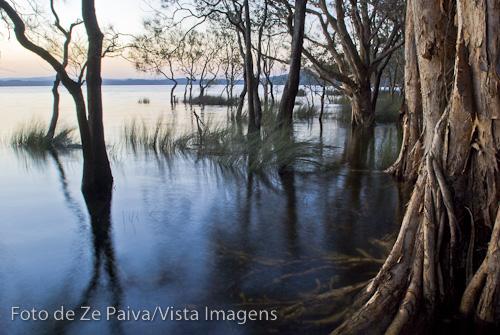 Myall Lake, Myall Lakes National Park, New South Wales, Australia