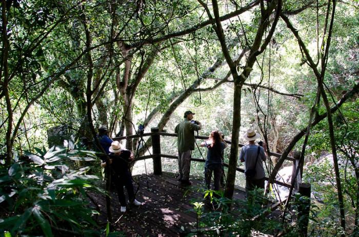 Workshop de fotografia de natureza no Eco parque Sperry em 2012.