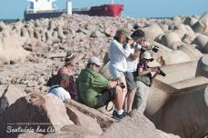 Refúgio de Vida Silvestre (Leões -marinhos), Molhes Leste, São José do Norte, Rio Grande do Sul - foto de Ze Paiva - Vista Imagens