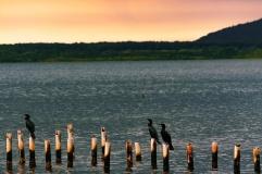 Costa da Lagoa, foto Tânia Silva