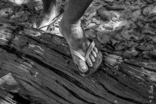 Ribeirinho no Parque Estadual do Cantão, Caseara, Tocantins - foto de Zé Paiva