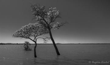 Lagoa da Confusão - foto de Rogério Knebel