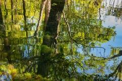 Lagoa de Dentro, Parque Estadual do Cantão - foto de Ronaldo Andrade