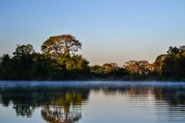 Parque Estadual do Cantão - foto de Maristela Sisson