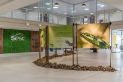 Exposição Bichos do Sul, São João Batista, Santa Catarina - foto de Ze Paiva - Vista Imagens