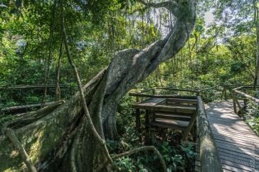 Parque Ecológico Maracajá, Santa Catarina - foto de Ze Paiva - Vista Imagens