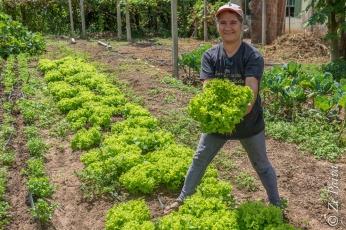 Assentamento Filhos de Sepé, Viamão, Rio Grande do Sul - foto de Ze Paiva - Vista Imagens